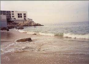 Beach at Monterey