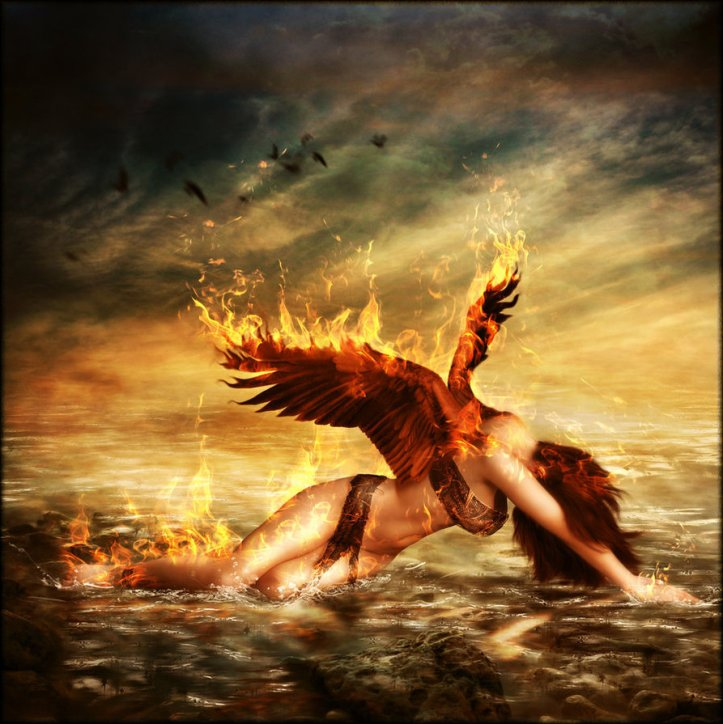 phoenix_by_brandrificus-d3a8eeq