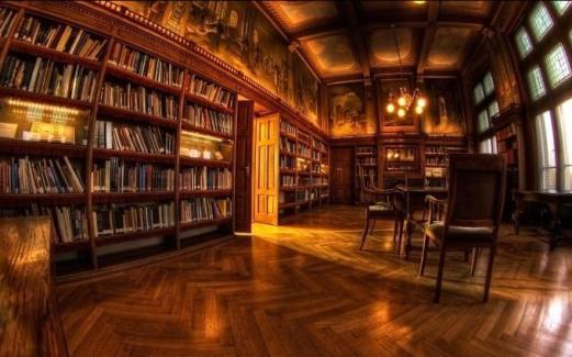 36471076-library-wallpaper