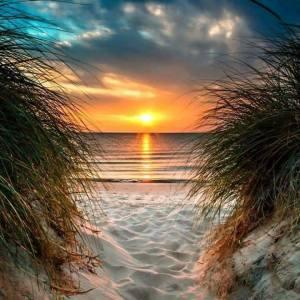 beachandsun