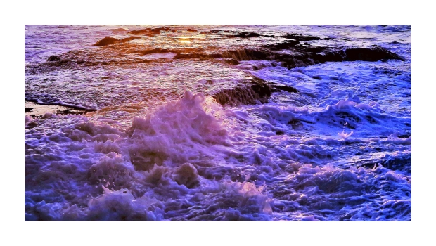 Waves of Poetry, Yancosky