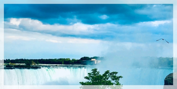 This photo depicts a seagull flying over Niagara Falls with stormy clouds above